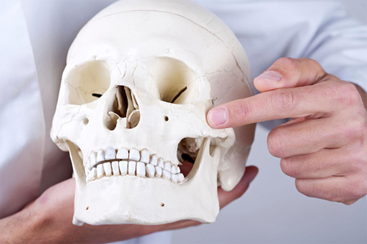 osso usato per inserire gli impianti zigomatici