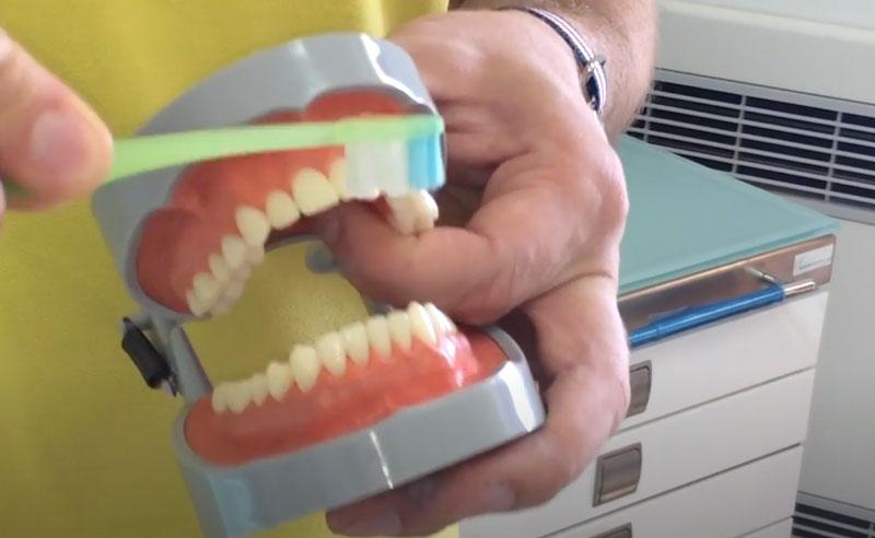 immagine del movimento corretto per spazzolare i denti