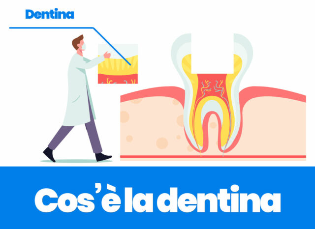 cos'è la dentina e come proteggerla